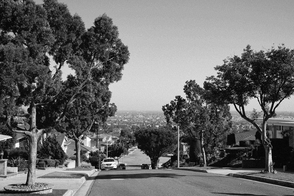 Untitled (Street View, View Park), 2017