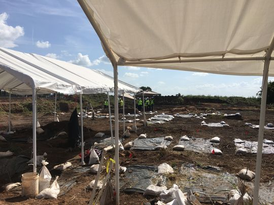 The graves of 95 African Americans believed to have been forced into labor under the convict leasing system were found on a school construction site in Sugar Land, Texas.